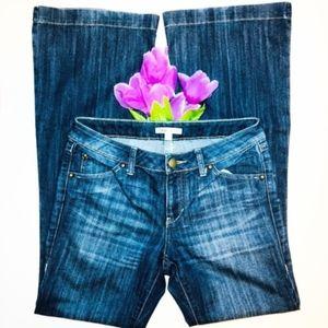 [CAbi] Flare Leg Trouser Jeans Style 881L Sz 6